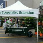 Fairlawn Lowes Plant Clinics